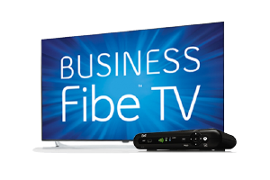 Fibe Business TV