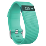 fitbit Fitbit Charge Activity Tracker