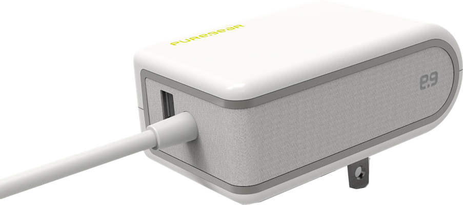 PureGear USB Type-C 4.8A Wall Charger