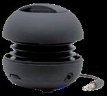 Affinity Electronics Kahuna 2 Speaker