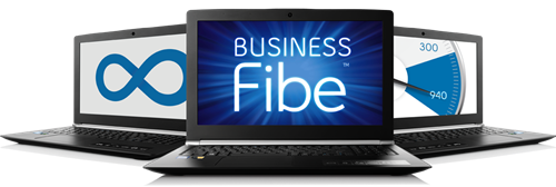 Business Fibe Internet