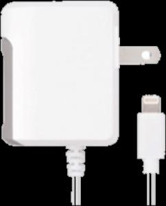 XQISIT Xqisit Lightning 2.4A (12W) Travel Charger