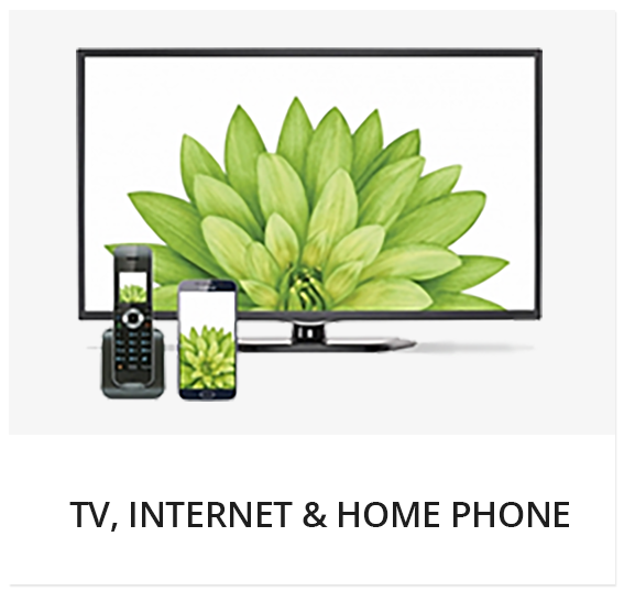 TELUS TV, Internet & Home Phone