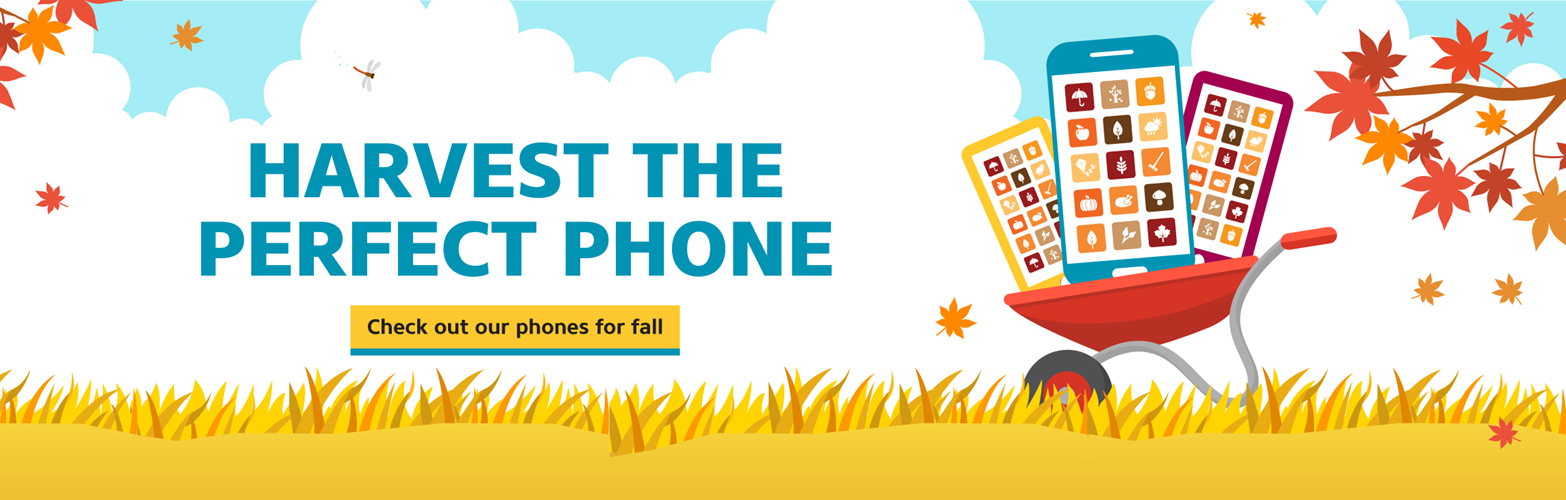 Harvest the perfect phone